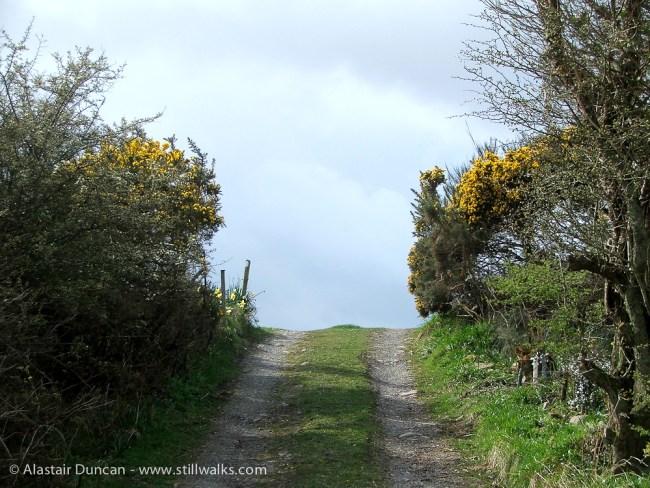 Galloway coastal lane