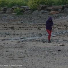 stone hunting