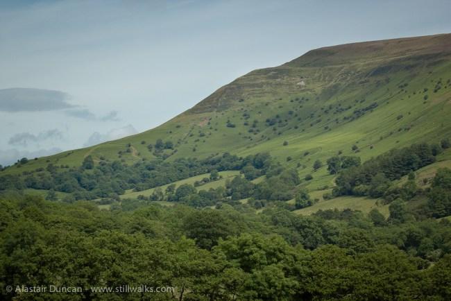 Mynydd Troed hillside