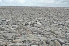 Pwlldu Bay stones