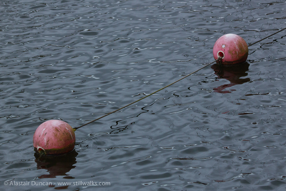 two marina floats