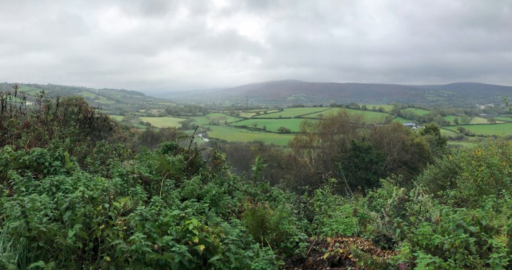 Local walks - valley view