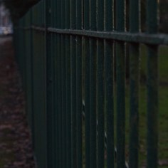 Dark Park Railings