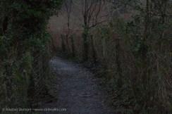 Riverside footpath