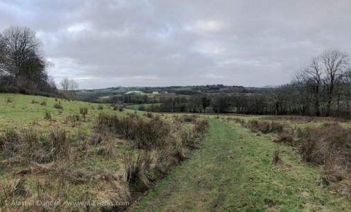 NBGW Landscape
