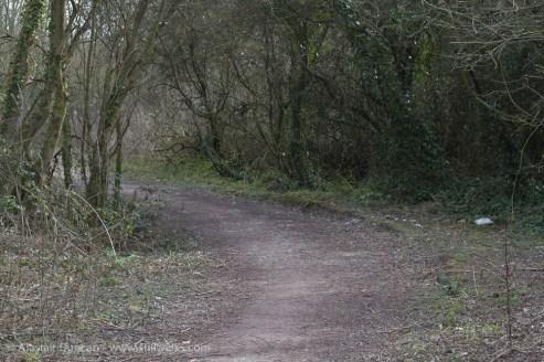 twisting footpath
