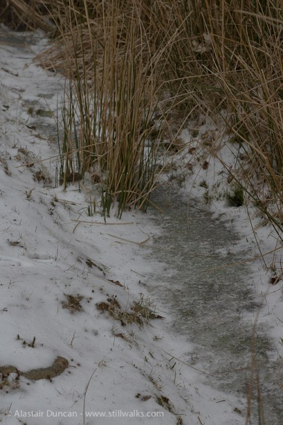 Cold ditch