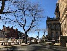 Victoria Square trees