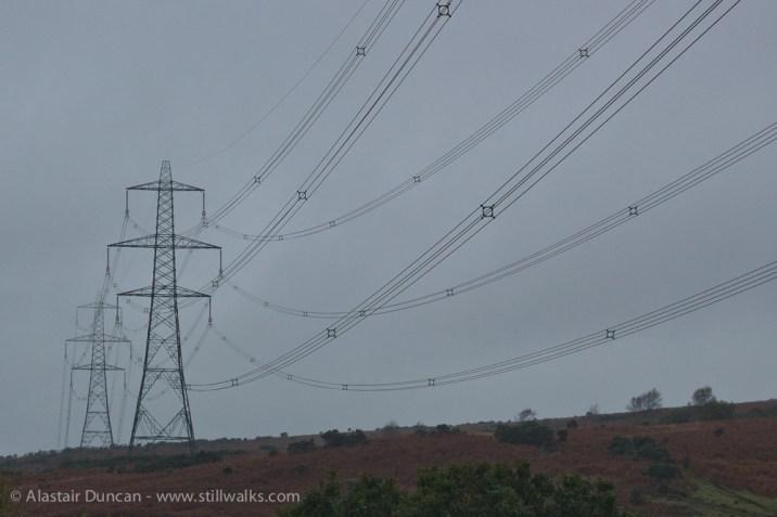 pylon perspective