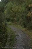 Goppa Hill-23