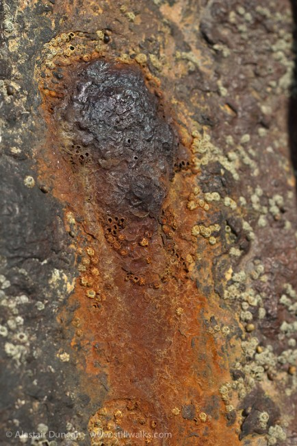 rust spot