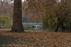 St James's Park-23