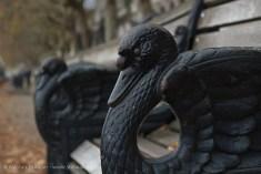 black swan seating