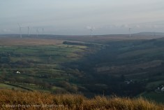 Landscape Overview