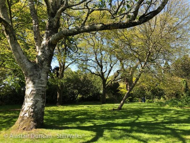 Swansea Botanic Gardens