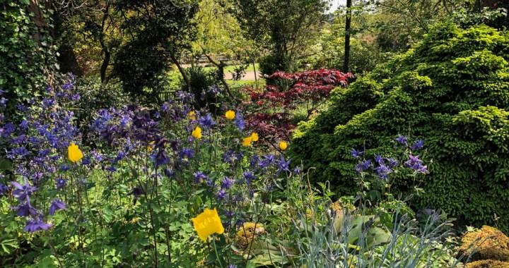 botanical colours galore