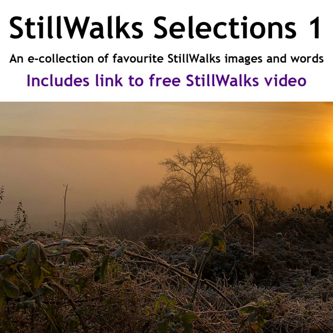 StillWalks Selections 1