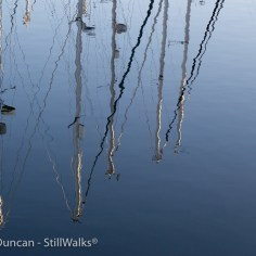 still reflections 2