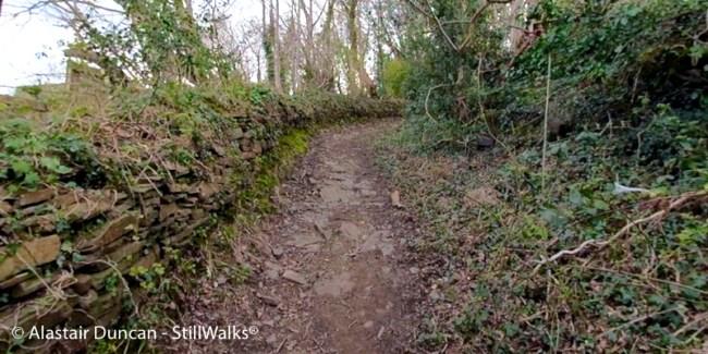 Goppa Hill Walk-1