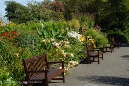 botanic garden approach