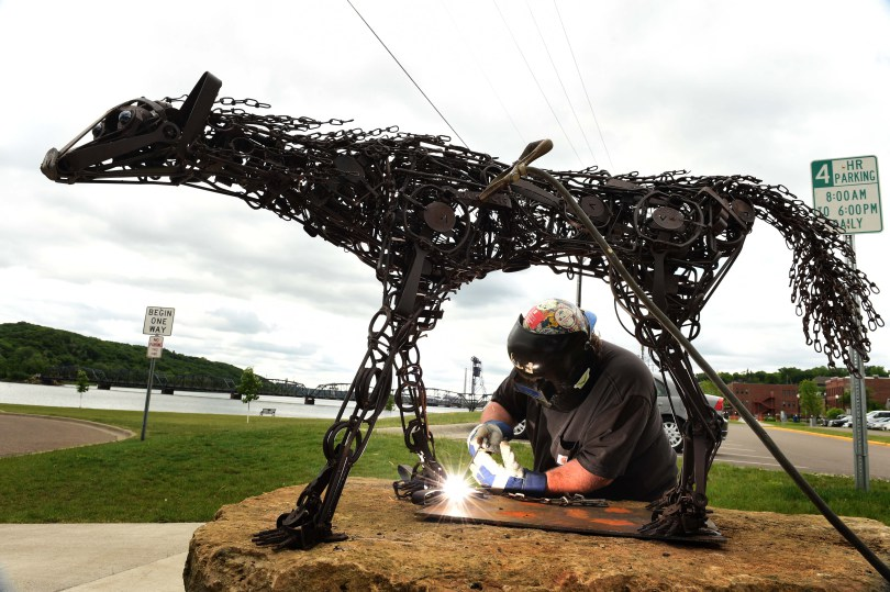 "Welder and artist John Hughes installs ""Trap"", an original outdoor sculpture of a life-sized female wolf made out of animal traps by Dale Lewis, in downtown Stillwater, Wednesday, June 1, 2016. (Pioneer Press: Scott Takushi)"