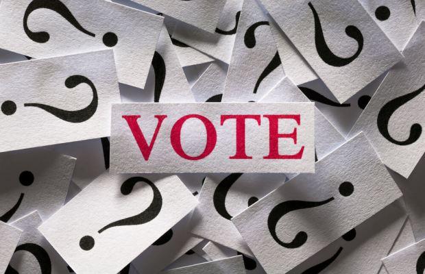 2016 election vote stimulated boredom dana sciandra