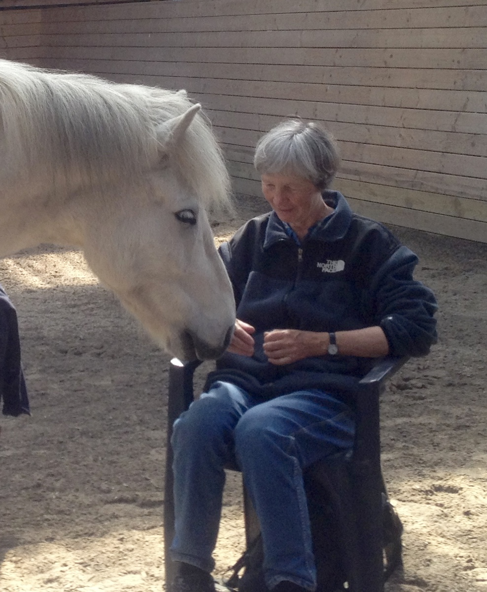 Katariina's blog – Equine Insanity