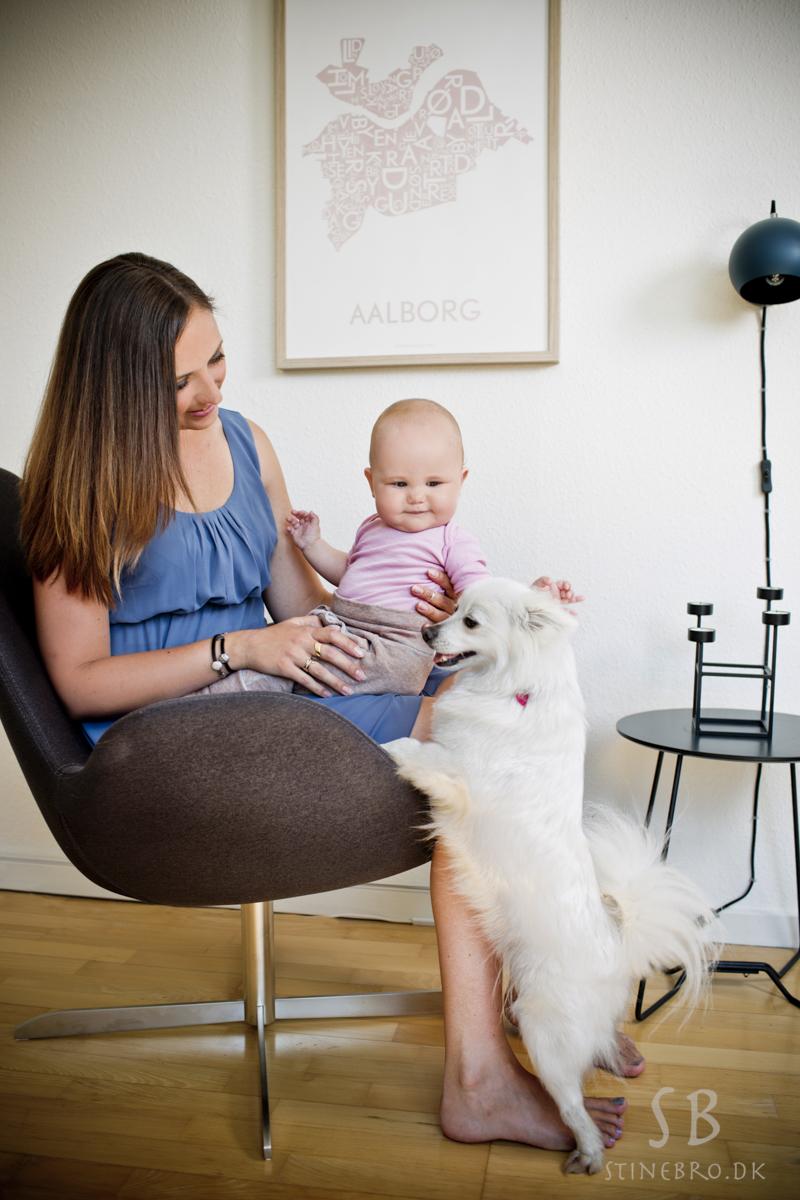 mor-datter-hund-billeder