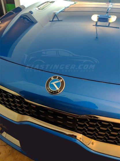 kia motors blue badge on stinger