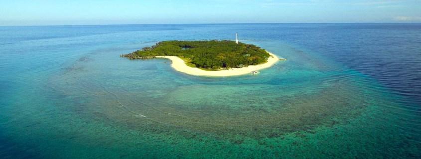 Stingray Divers - Tauchreise Apo Reef, Philippinen