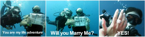 underwater proposal stingy nomads indonesia