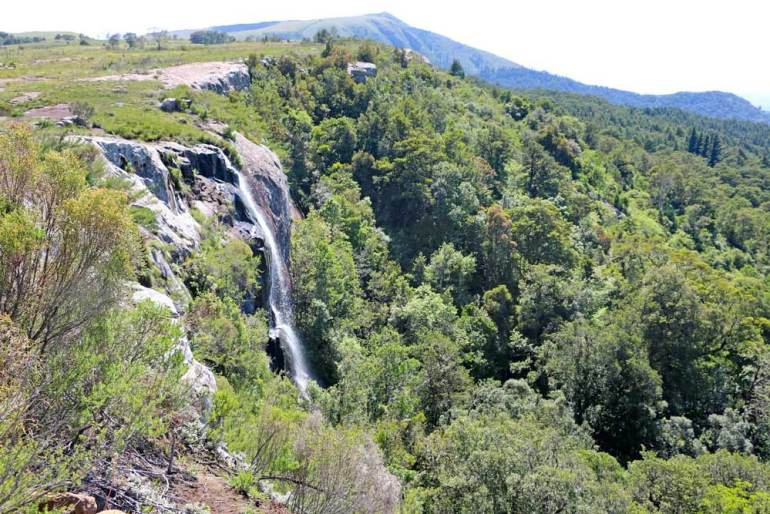 A waterfall dropping down from a plateau into the forest
