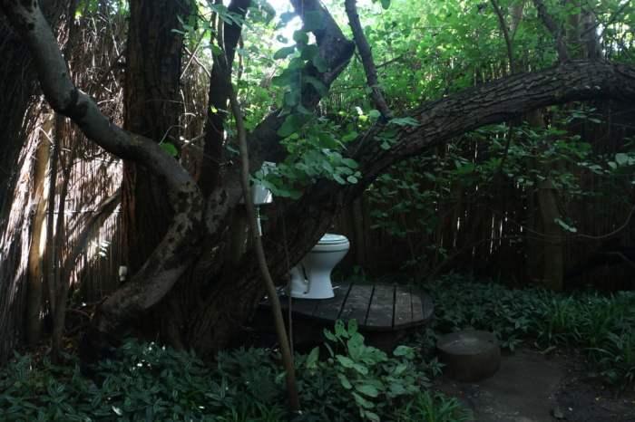 Paradise toilet, Ngepi