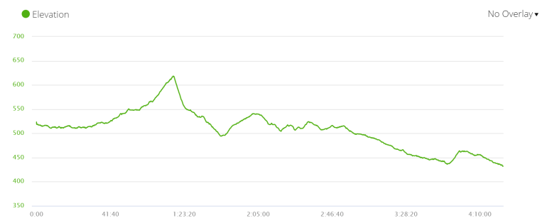 Day7 elevation profile, Via de la Plata