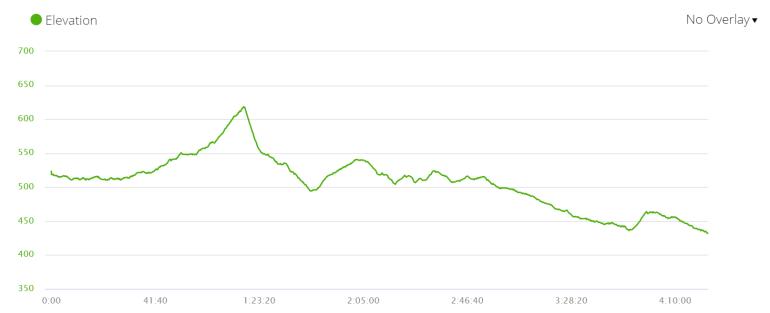 Day7 elevation profile, Via de la Plata