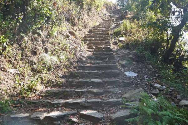 One of the many stairs on Annapurna Base Camp trek