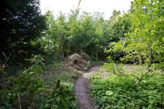 23 augustus 2012 schoonmaken terrein