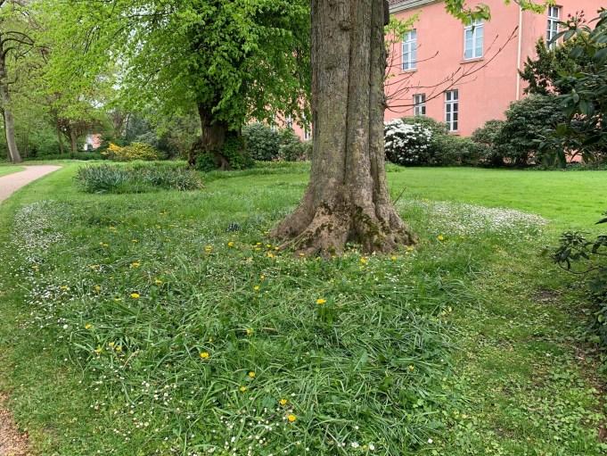 Schlosspark Jever. Foto Stinze Stiens.