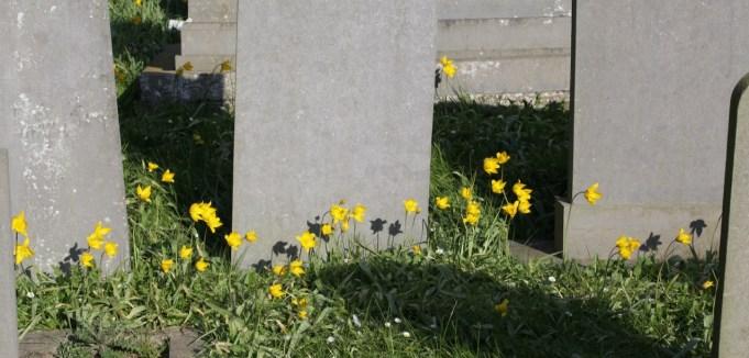 Bostulp, kerkhof Ternaard.