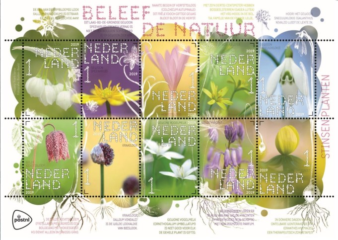 PostNL, 25 February 201, new edition of stamps 'Stinzenplants' in the series 'Experience Nature'.
