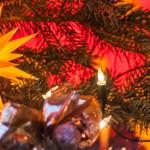 Weihnachtsmarkttest: Stallhof Dresden