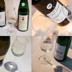 Jungweinprobe Sachsen Saale-Unstrut