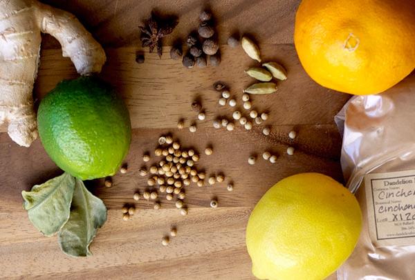 Gin and Southeast Asian Tonic // stirandstrain.com