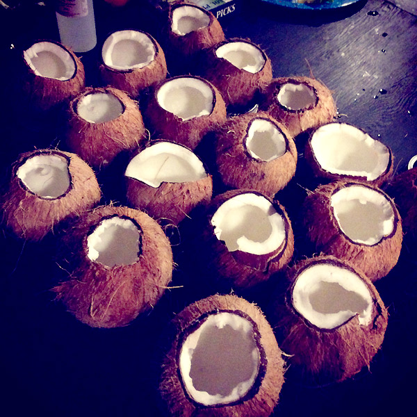 coconuts: booze news // stirandstrain.com