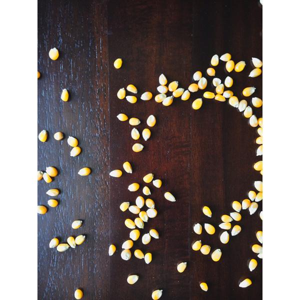 boozenews-cornshot
