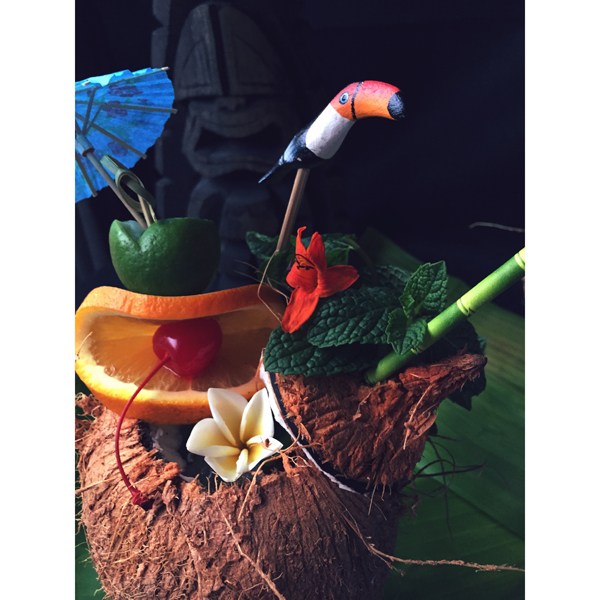 boozenews-toucan