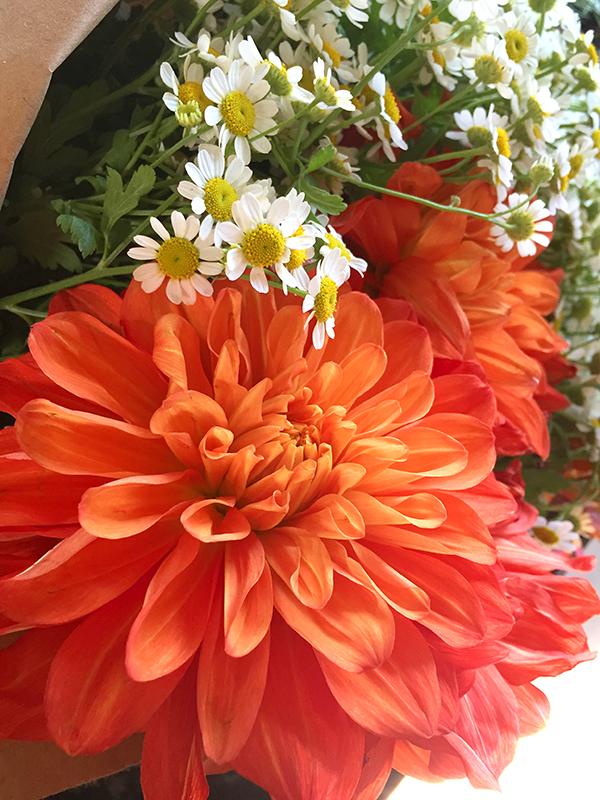 Monday Booze News: time for flowers // stirandstrain.com
