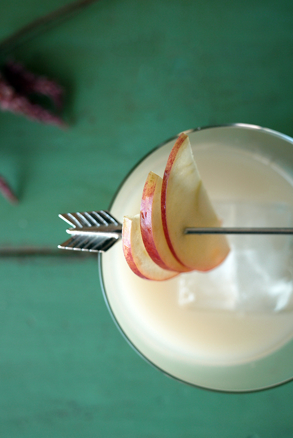 Indian Summer Apple Cider Switchel Cocktails // stirandstrain.com