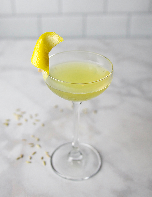 Make It: Fennel Liqueur // stirandstrain.com