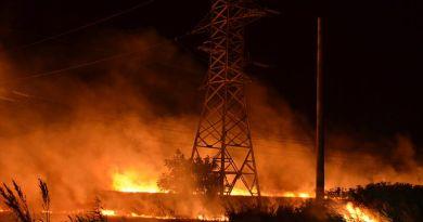 Două incendii de vegetație uscată, lăstăriș și mărăciniș